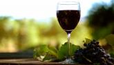Празник на Любовта и Виното в етно село Стара планина